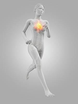 Heart Of A Runner Art Print by Sebastian Kaulitzki