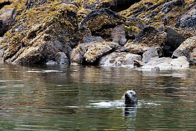 Royalty Free Images Photograph - Juneau, Alaska, Usa by Sergi Reboredo