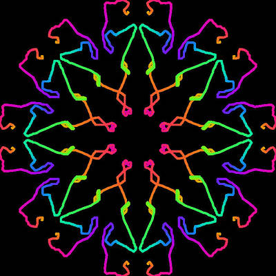 Kaleidoscope Drawing Print by Bruce Nutting