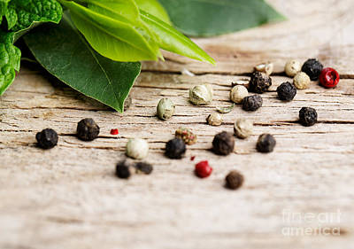 Still Life Royalty-Free and Rights-Managed Images - Kitchen Herbs by Nailia Schwarz