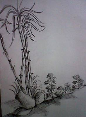 Drawing - Landscape by Hihani Gautam