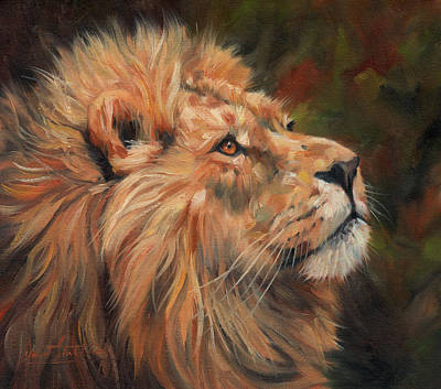 Male Cat Painting - Lion by David Stribbling