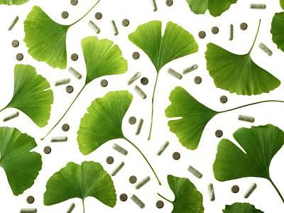 Maidenhair Leaves Art Print