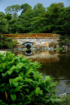 Bridge Photograph - Morikami Japanese Garden And Museum by Amy Cicconi