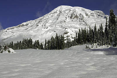 Photograph - Mount Rainier From Paradise by Bob Noble