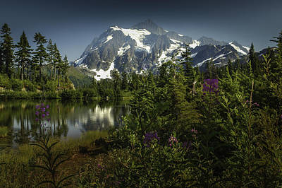 Photograph - Mount Shuksan by Jean-Jacques Thebault