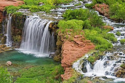 Havasupai Photograph - Navajo Falls On The Havasupai by Chuck Haney