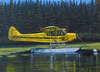 Piper Cub Painting - Piper Super Cub by Elizabeth Mailly