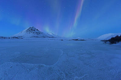 Photograph - Northern Lights Or Aurora Borealis by Robert Postma