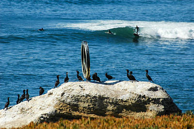 Surfing Photograph - Ocean Beach Series by Josh Whalen