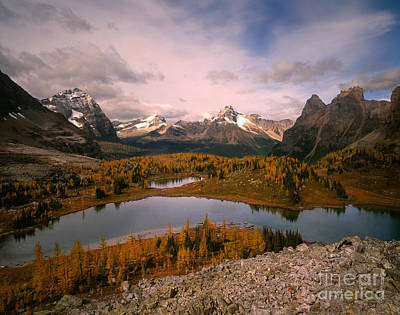 Ohara Photograph - Odaray And Cathedral Mountains by Tracy Knauer