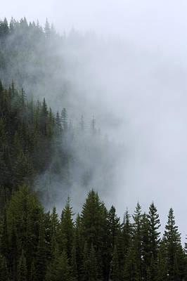 Photograph - Olympic Mountain Range by Byron Jorjorian