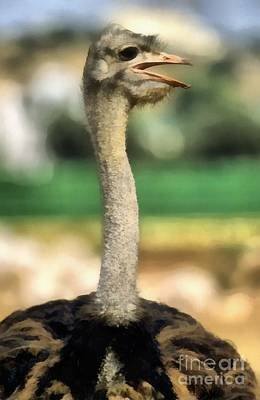 Ostrich Painting - Ostrich by George Atsametakis