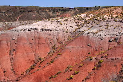 Photograph - Painted Desert by Frank Romeo