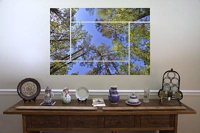 Photograph - 5-panel - A Forest Sky by Gordon Elwell