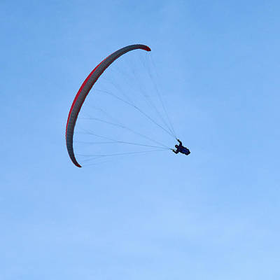 Photograph - Paragliders by Jouko Lehto