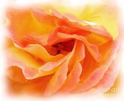 Photograph - Peach Rose by Allen Beatty