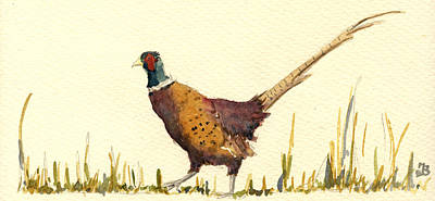 Pheasant Wall Art - Painting - Pheasant by Juan  Bosco