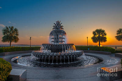 Photograph - Pineapple Glow by Dale Powell