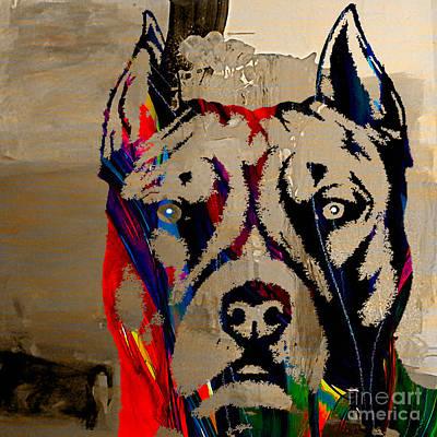 Bull Terrier Mixed Media - Pitbull by Marvin Blaine