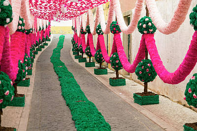 Streamers Photograph - Portugal, Santarem District by Emily Wilson