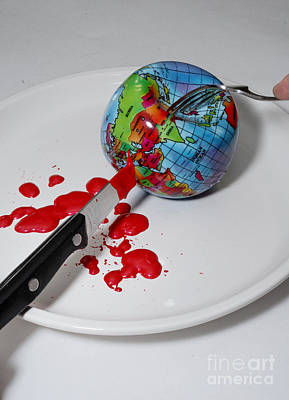 Global Warming Photograph - Reflected Globe by Amy Cicconi