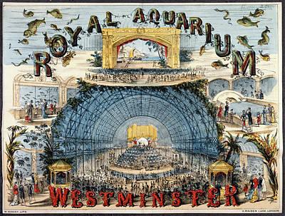 Illustration Technique Photograph - Royal Aquarium by British Library