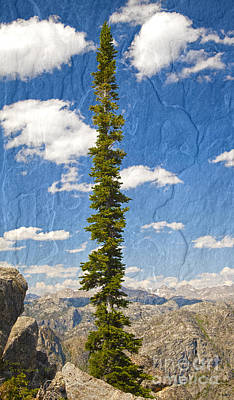 Photograph - Rugged Wind River Range - Where Solitude Rules by John Stephens