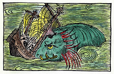 Historia Wall Art - Painting - Sea Monster, 1555 by Granger
