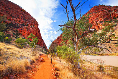 Northern Territory Photograph - Simpsons Gap by Bill  Robinson