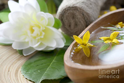 Mythja Photograph - Spa Setting With Flower by Mythja  Photography