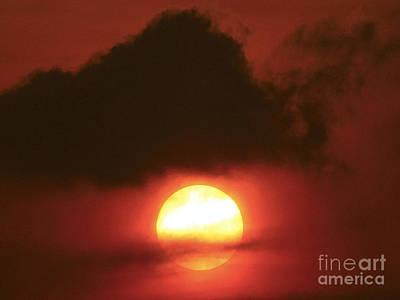 Australia Photograph - Sunset  by Girish J