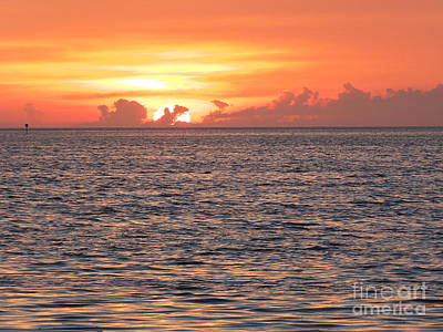 Photograph - Sunset by Vicky Tarcau