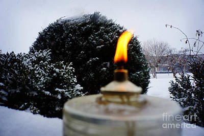 Pine Cones Photograph - The Candle In The Snow by Celestial Images