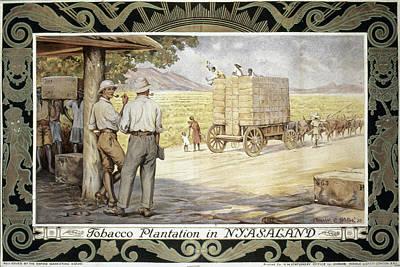Malawi Painting - Tobacco Plantation by Granger