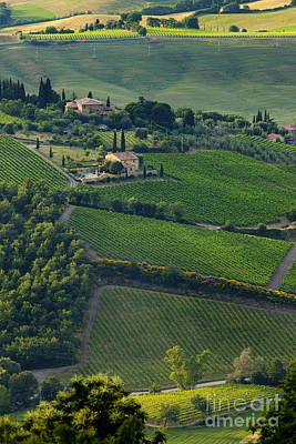 Brunello Photograph - Tuscany by Brian Jannsen
