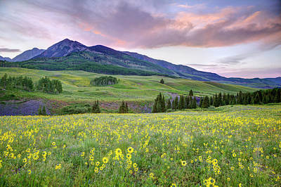 Dennis Photograph - Usa, Colorado, Crested Butte by Jaynes Gallery