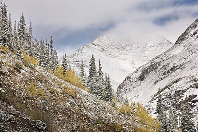 Usa, Colorado, Rocky Mountains Art Print by Jaynes Gallery