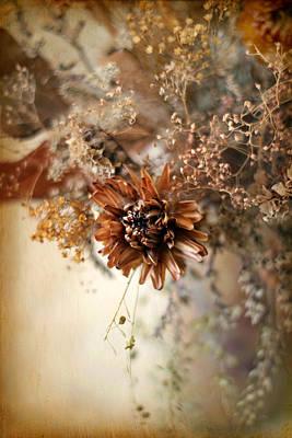 Dried Photograph - Vintage Still Life by Jessica Jenney