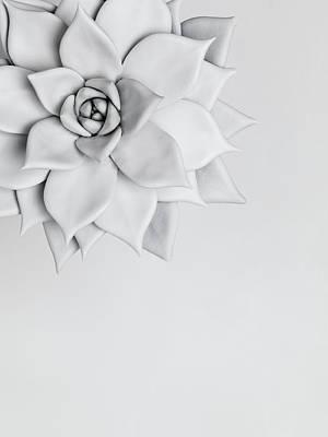 Photograph - White Nature by Henrik Sorensen