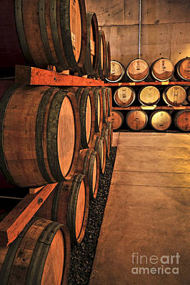 Indoor Photograph - Wine Barrels by Elena Elisseeva