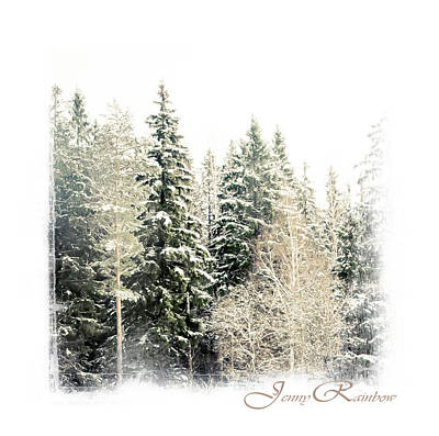 Photograph - Winter Wonderland. Elegant Knickknacks From Jennyrainbow by Jenny Rainbow