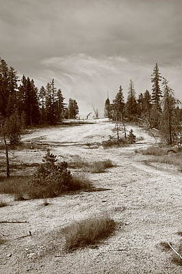 Photograph - Yellowstone National Park - Mountain Slope by Frank Romeo