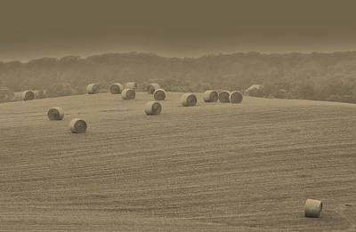 Biege Photograph - 50 Shades Of Hay by Robert Geary