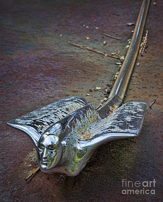 Photograph - 50s Cadillac Hood Ornament #2 by Ken Johnson