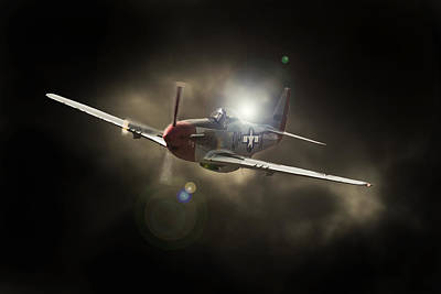 P51 Mustang Photograph - 51 by Paul Job