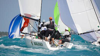 Moody Trees - Key West Race Week by Steven Lapkin