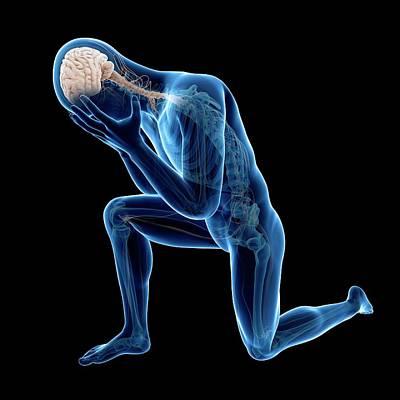 Human Nervous System Art Print by Sebastian Kaulitzki