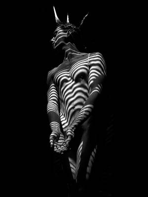 Photograph - 5812 Zebra Striped Male Body In Black And White by Chris Maher