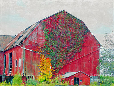 Photograph - 585 Barn by Gena Weiser